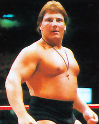Sammartino Hall of Fame