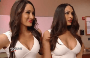 Bella twins WWE
