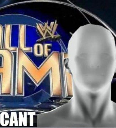 WWE hall of fame 2014 inductees