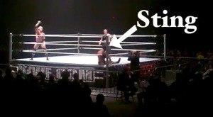 Sting-wwe-debut