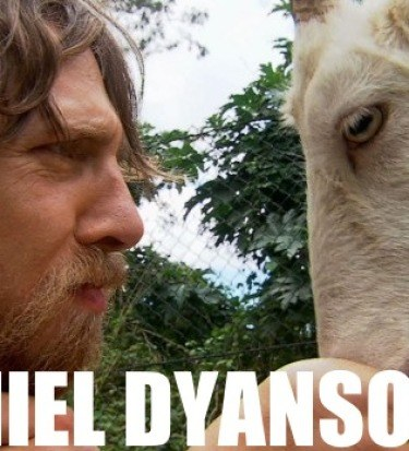 Daniel bryan goat