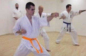 Lesnar martial arts