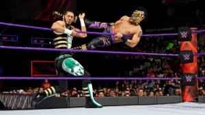 cruiserweights purple