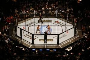 UFC WWE