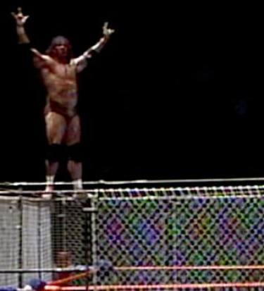 Jimmy Snuka cage muraco