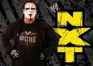 sting-nxt