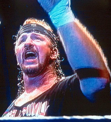 Terry funk retirement