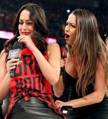 Nikki Bella attacks brie
