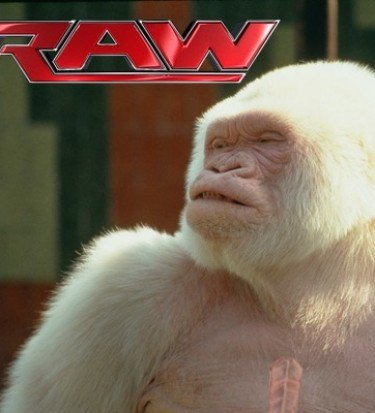 lesnar raw