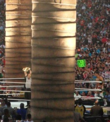 Wrestlemania view