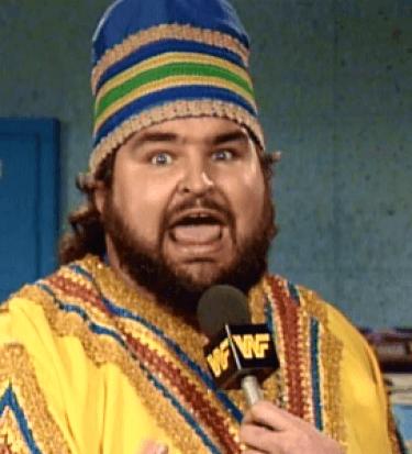 Hogan racist