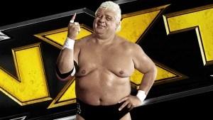 Dusty Rhodes tag team tournament