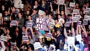 Cesaro fans