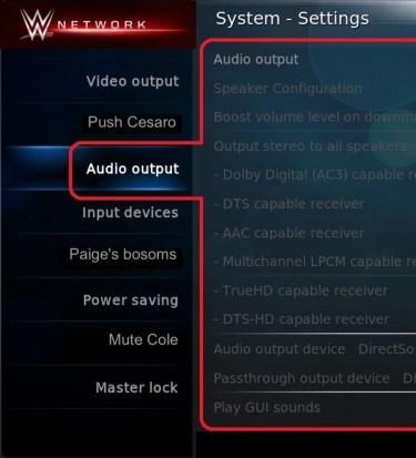 WWE network audio setttings