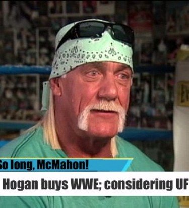 Hogan net worth hulk