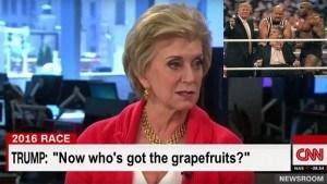 Linda McMahon trump