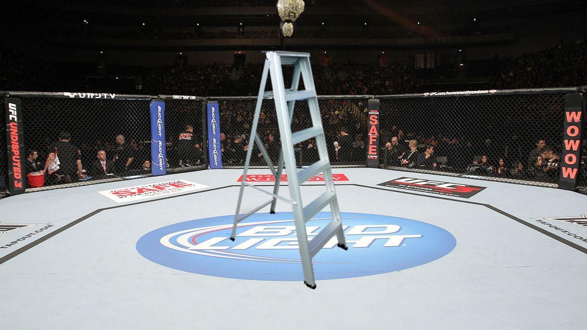 ufc title match