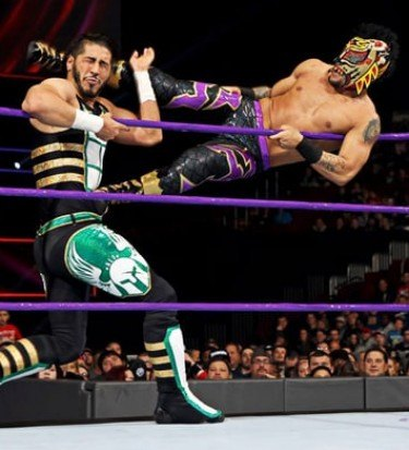 cruiserweights purple