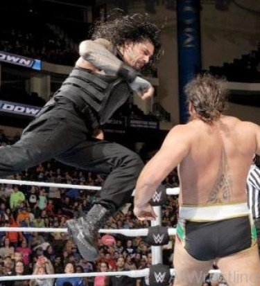 reigns punch